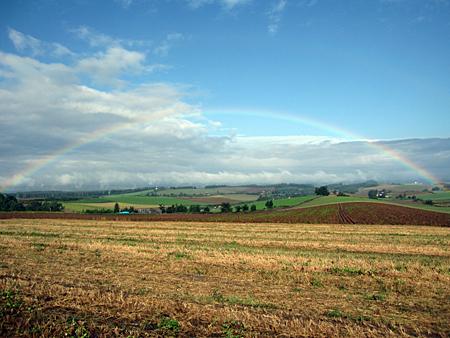 美瑛の丘にかかる虹