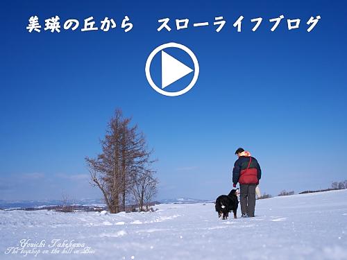 陽一散歩ブログへ580.jpg