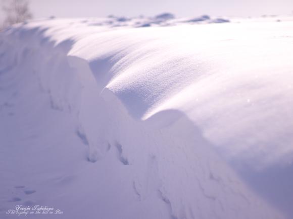 ビロードの波
