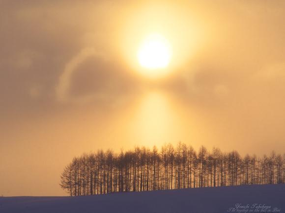 金色(こんじき)の空