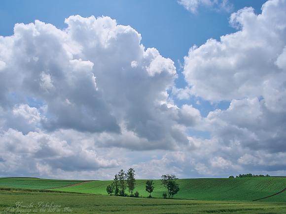 雲を見上げて