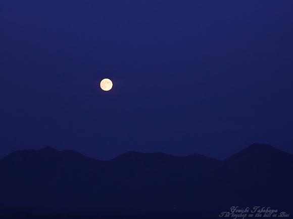 葡萄色の夜(横顔)